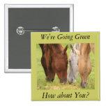 Grazing Horses Button 2 Inch Square Button