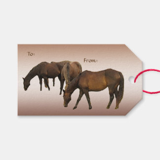 Grazing Horses Pack of Gift Tags