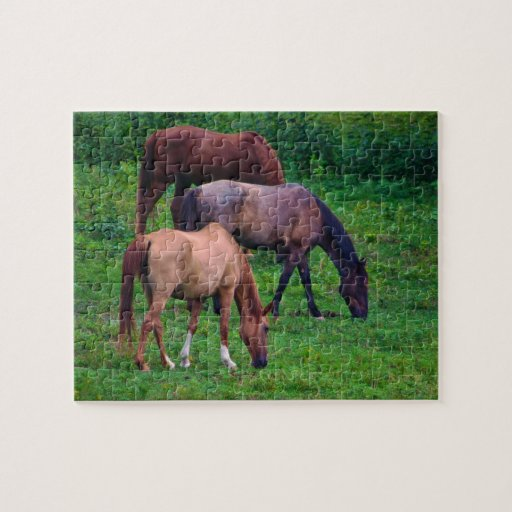 Grazing Horses Puzzle with gift box.