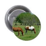 Grazing Horses Scene 6 Cm Round Badge