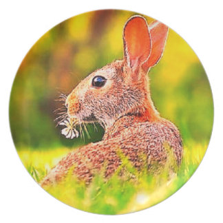 Grazing in the field Rabbit dinner plate