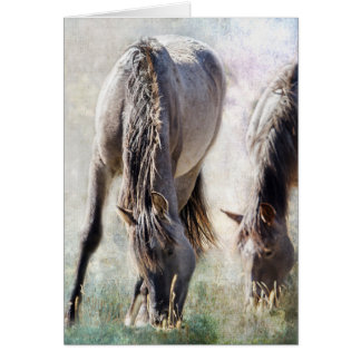 Grazing on Light and Freedom Card