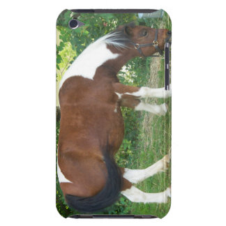 Grazing Pony iTouch Case iPod Touch Case