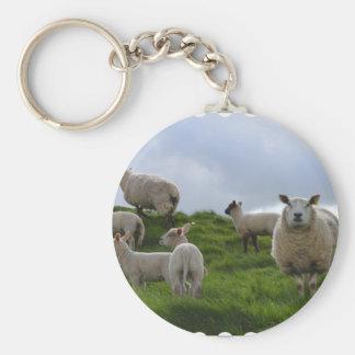 Grazing Sheep Basic Round Button Key Ring