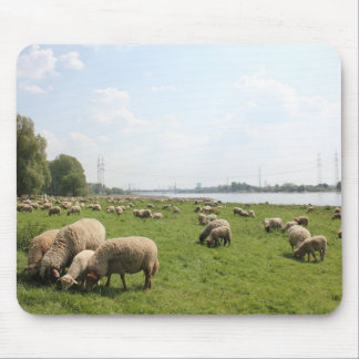 Grazing Sheep by the Rhine Mouse Pads