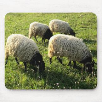 Grazing Sheep Mouse Mat