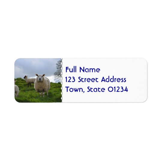 Grazing Sheep Return Address Label