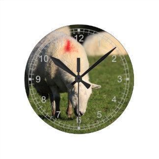 Grazing Sheep Round Clock