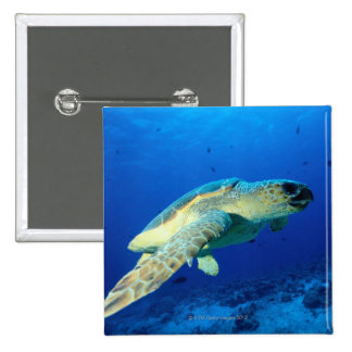 Great Barrier Reef, Australia 2 15 Cm Square Badge