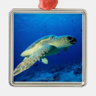 Great Barrier Reef, Australia 2 Christmas Ornament