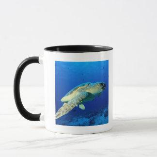 Great Barrier Reef, Australia 2 Mug