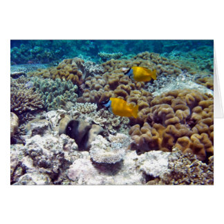 Great Barrier Reef Greeting Card
