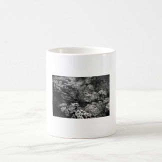 Great Barrier Reef (in grayscale) Basic White Mug