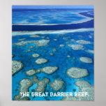 Great Barrier Reef Print