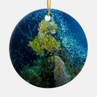 Great Barrier Reef Tropical Fish Coral Sea Christmas Ornament