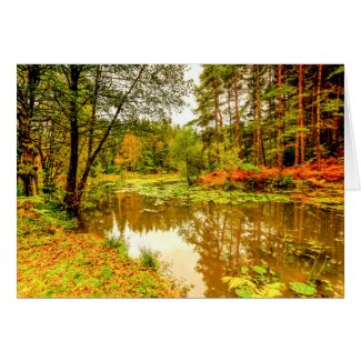 Great Berry Pond Card