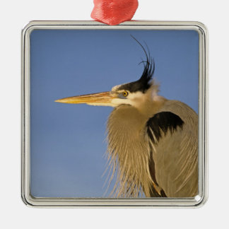 Great Blue Heron, Ardea herodias, adult, Christmas Ornament