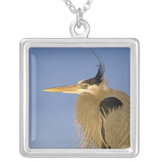 Great Blue Heron, Ardea herodias, adult, Square Pendant Necklace