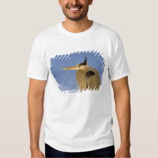 Great Blue Heron, Ardea herodias, adult, Tshirts