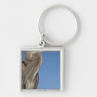 Great Blue Heron Ardea herodias) Puerto Silver-Colored Square Key Ring