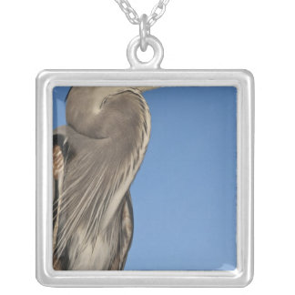 Great Blue Heron Ardea herodias) Puerto Silver Plated Necklace