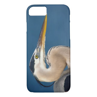 Great Blue Heron (Ardea herodias). USA, Florida, iPhone 8/7 Case