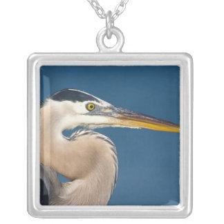 Great Blue Heron (Ardea herodias). USA, Florida, Silver Plated Necklace