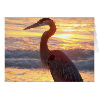 Great Blue Heron at Sunset Card
