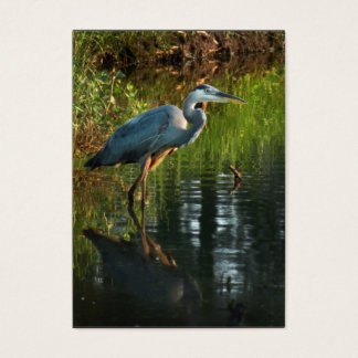 Great Blue Heron ATC Photo Card 2