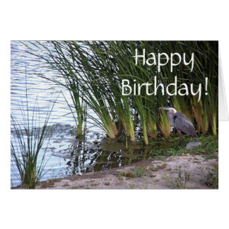 Great Blue Heron Bird Wildlife Animal Birthday Card