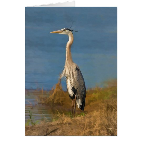 Great Blue Heron Blank Note or Greeting Card