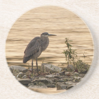 Great Blue Heron Coaster