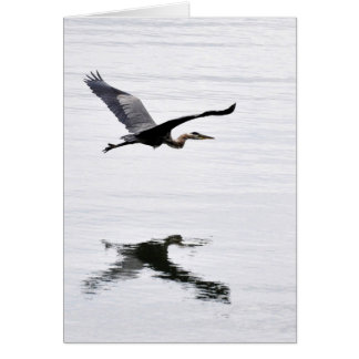 Great Blue Heron Flying Card