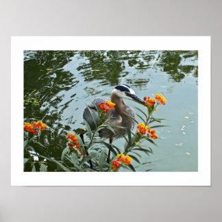 Great Blue Heron Lantana Print