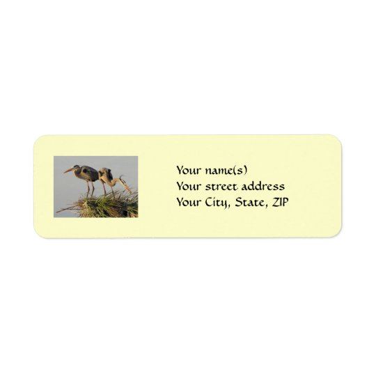 Great Blue Heron Pair on the Nest Return Address Label