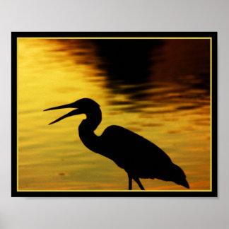 Great Blue Heron Print