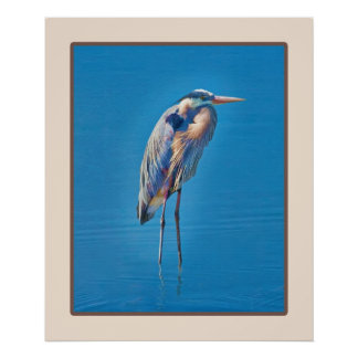 Great Blue Heron Wading at the Pond Poster