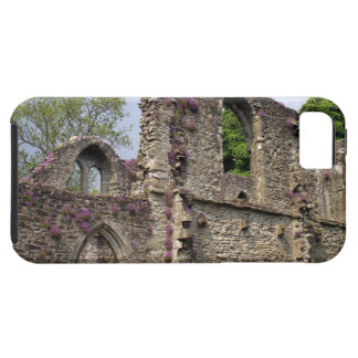 Great Britain, United Kingdom, Scotland. Ruins 2 Case For The iPhone 5