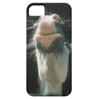 Great Britian Barely There iPhone 5 Case