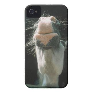 Great Britian iPhone 4 Case