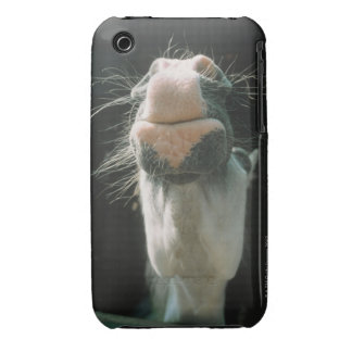Great Britian iPhone 3 Case-Mate Cases