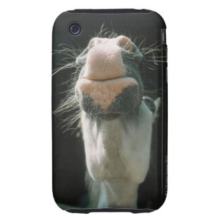 Great Britian Tough iPhone 3 Covers