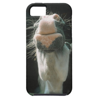 Great Britian Case For The iPhone 5