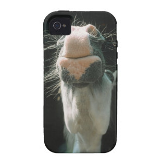 Great Britian iPhone 4 Covers