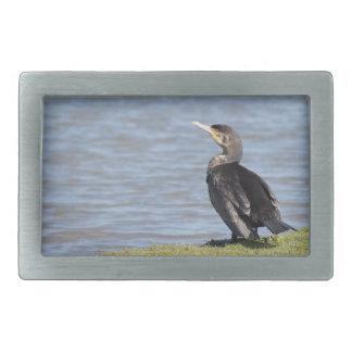 Great Cormorant Belt Buckle