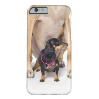 Great Dane and Dachshund portrait Barely There iPhone 6 Case