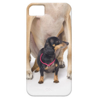 Great Dane and Dachshund portrait Case For The iPhone 5