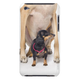 Great Dane and Dachshund portrait iPod Touch Case