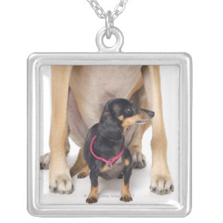 Great Dane and Dachshund portrait Silver Plated Necklace