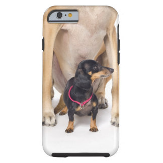 Great Dane and Dachshund portrait Tough iPhone 6 Case